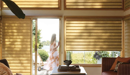 Alpine Shutters Window Shades