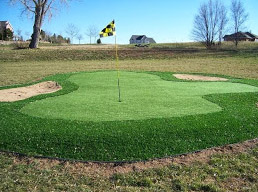 Martinez Care Synthetic LandscapingPutting Green