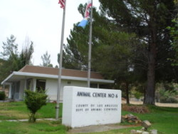 Castaic Animal Care Center