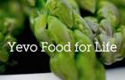 Yevo Big Logo
