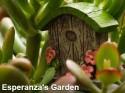 Esperanza's Garden