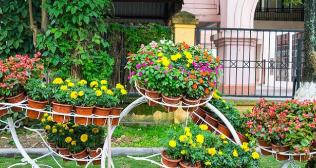 Source: https://pixabay.com/photos/garden-flower-landscaping-thailand-721923/