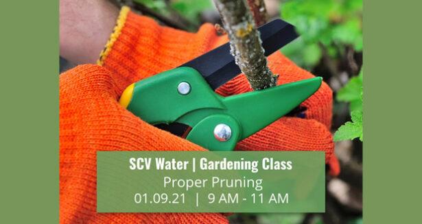 SCV Water January 2021 Gardening Class